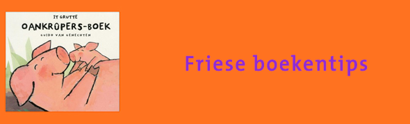 Friese boekentips