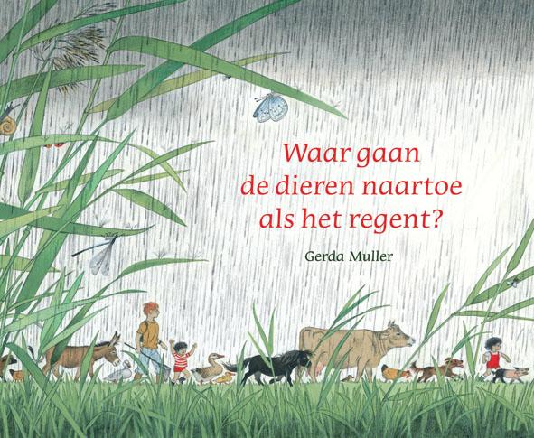 Waar gaan de dieren naar toe als het regent? | Gerda Muller